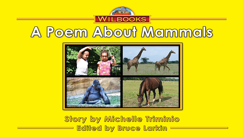 3182-XL8X A Poem About Mammals_Page_01